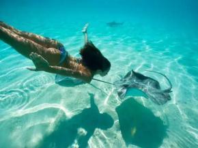 游泳技巧:三分钟看懂游泳换气技巧,自学成才不是梦!